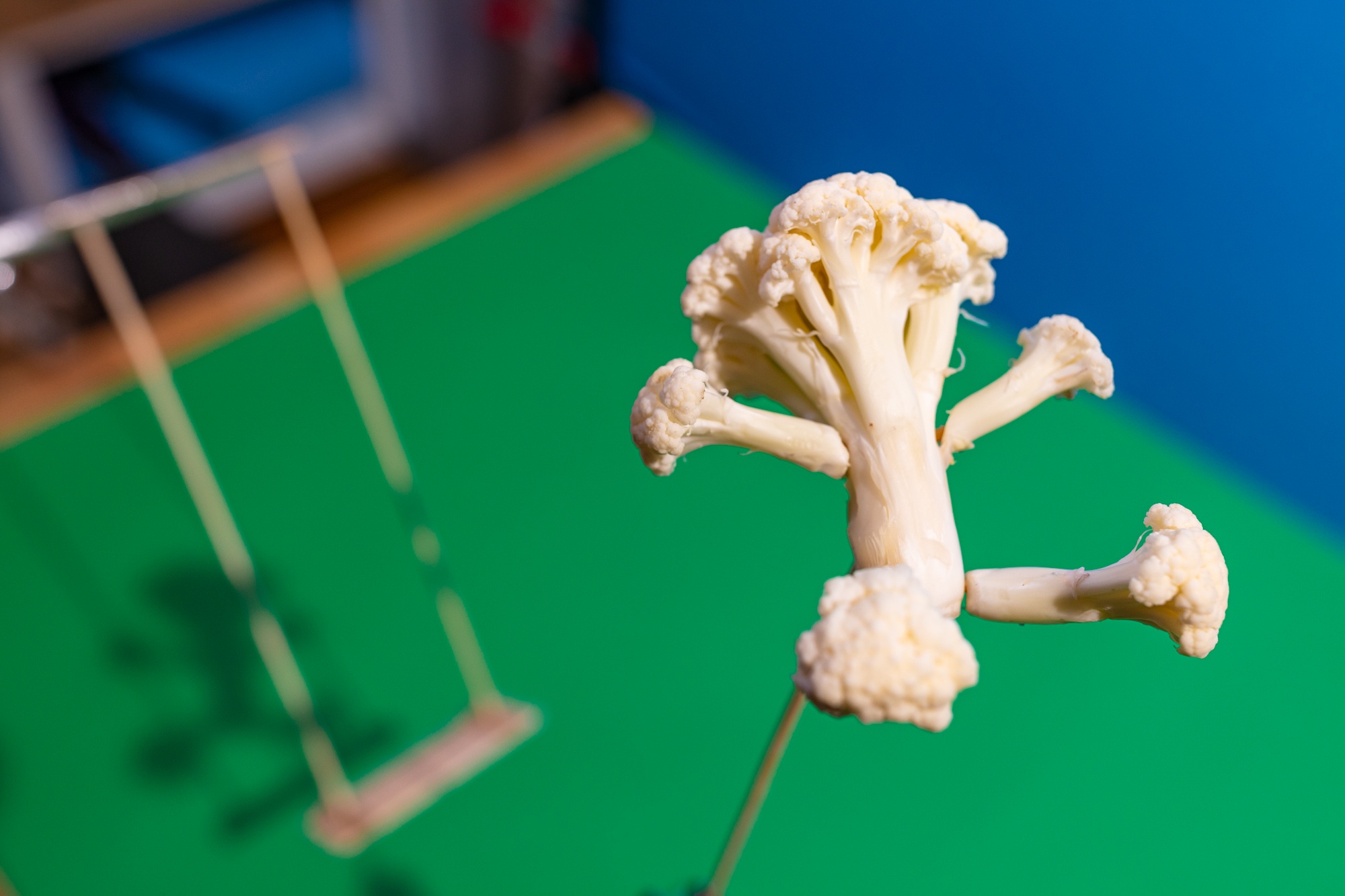 "Making of ""Vegan Cauliflower Buffalo Wings"""