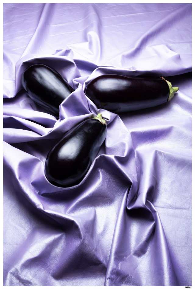 FOODLYDOODLYDOO_EGGPLANT ON FABRIC_