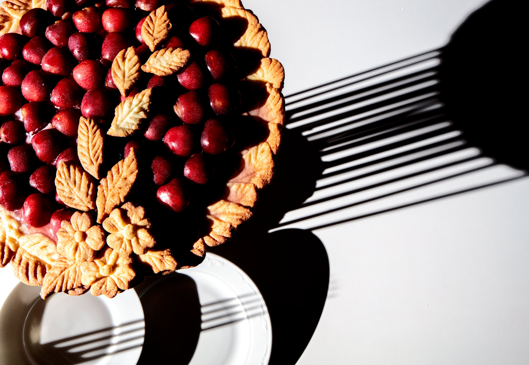 A Cherry tarte and a plate. Depicted in strong crisp light with hard shadows. The shadow of a fork is seen just as a pattern of striped shadows