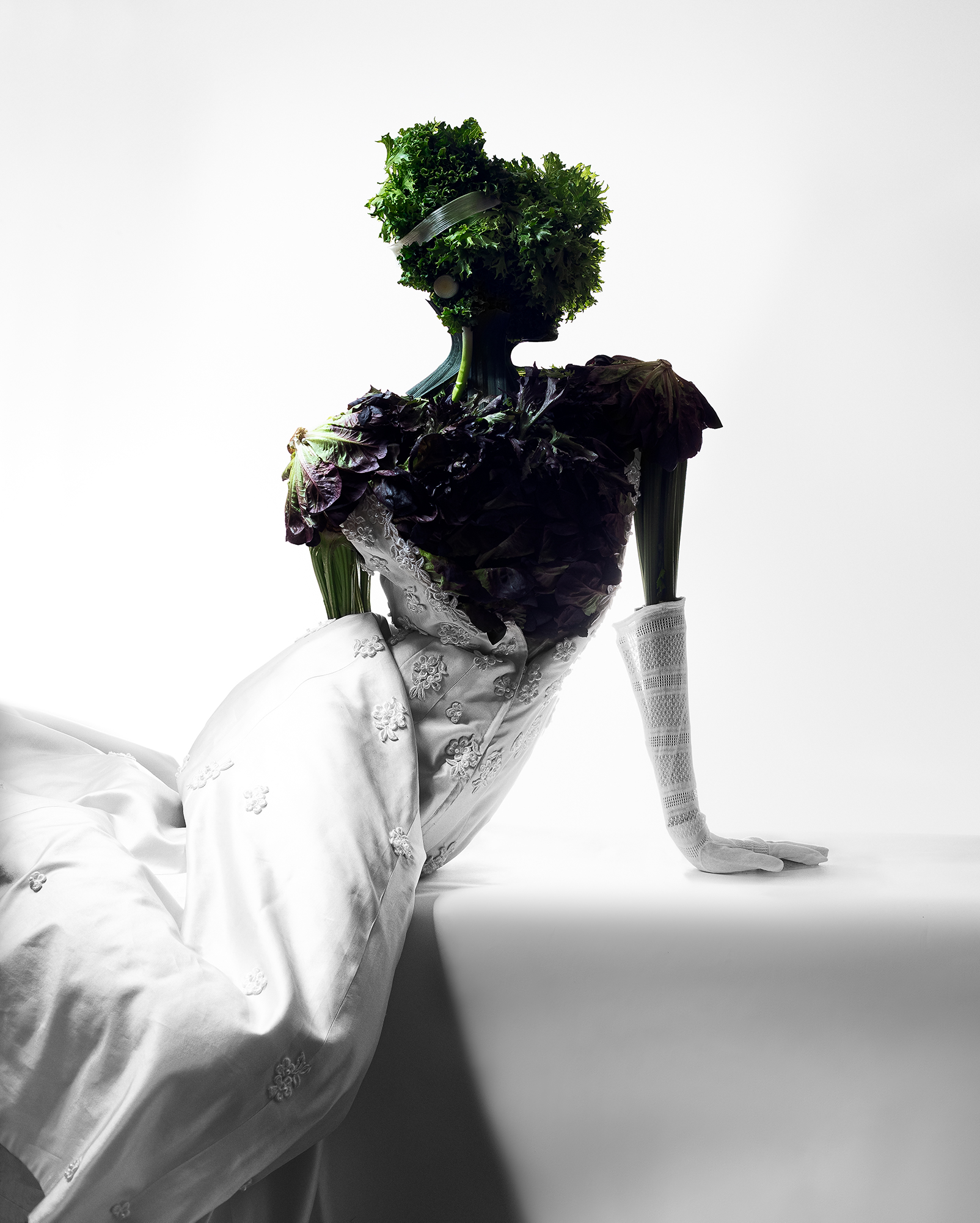 Fashion meets Food. Salad heads, celery and leeks are put together with a white long evening dress and white gloves. In a way that they resemble the figure of a women leaning elegantly looking to the side.