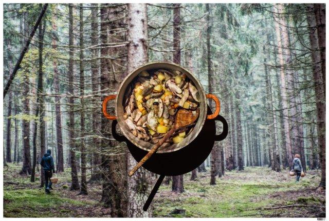 Forest mushroom soup by FoodlydoodlyDoo_