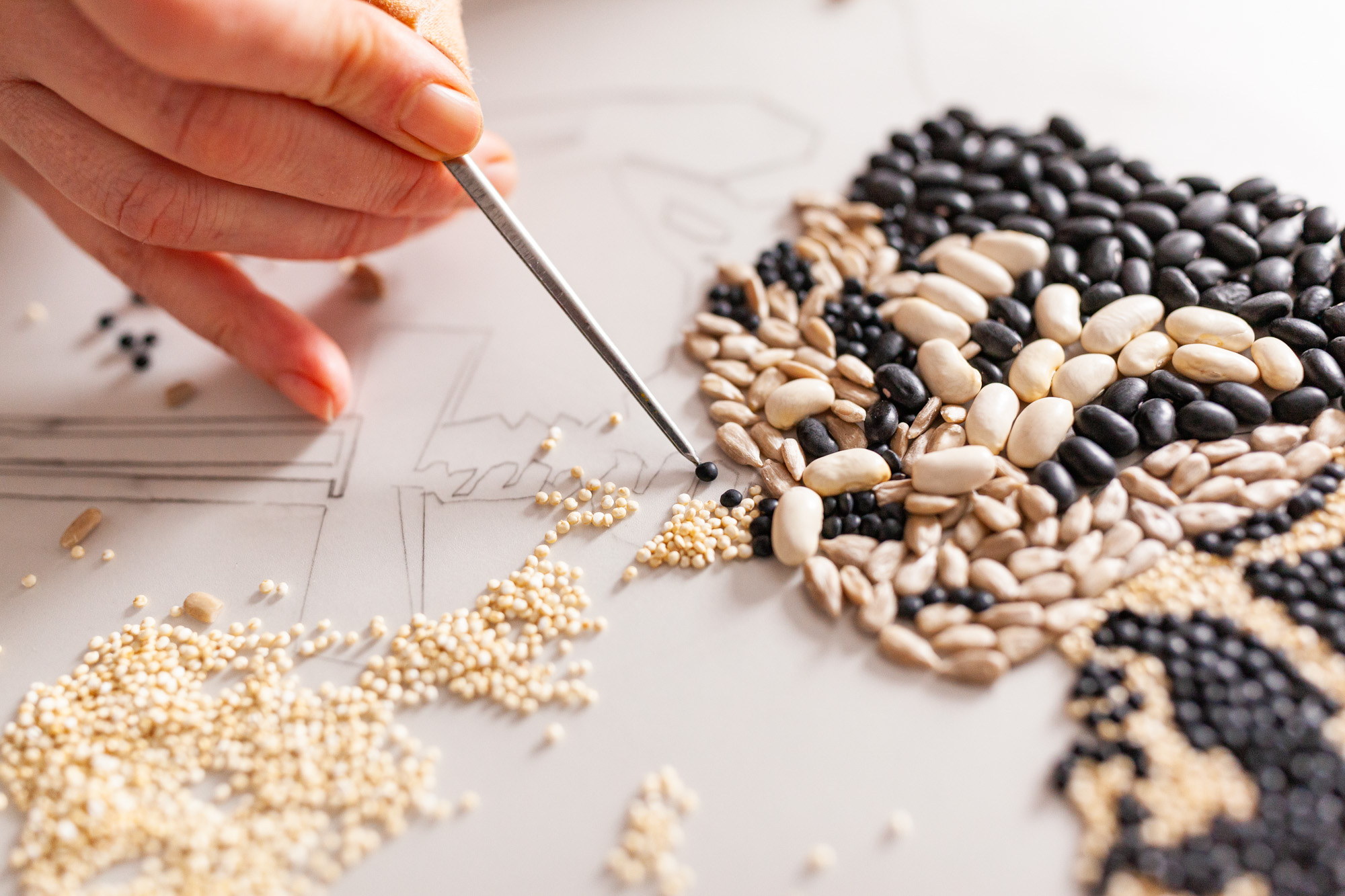 Behind the scenes photo of the vegan propaganda production. A photo studio is shown with a food stylist laying out several seeds, peas and legumes to form the stilyzed image of a man.